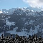 Austrian Mountains by RuariFieldPics