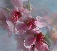 You Must Believe in Spring by Marilyn Cornwell