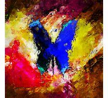 butterfly splash Photographic Print