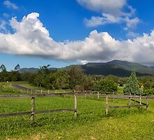 Rural View in Queensland by hereswendy