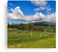 Rural View in Queensland Canvas Print