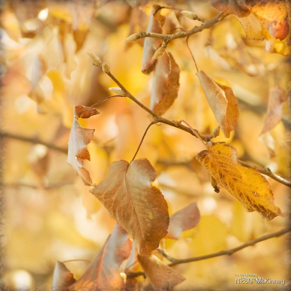Sweet Autumn by Nicole  McKinney