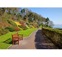 Pre-Spring Colours Photographic Print