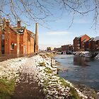 Bridgwater and Taunton Canal #2 by Antony R James