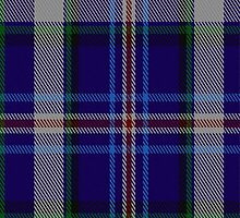 00690 New Millennium Fashion Tartan Fabric Print Iphone Case by Detnecs2013