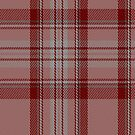 00694 Nevis Fashion Tartan Fabric Print Iphone Case by Detnecs2013