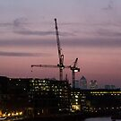 Cranes over London by Barry Robinson