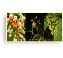 The World of Exotic Flowers Canvas Print