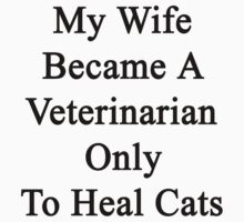 My Wife Became A Veterinarian Only To Heal Cats by supernova23