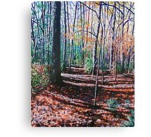'A WALK IN THE WOODS'  Canvas Print