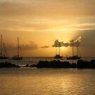 Sunset at Coconut Bay, Tobago by Wayne Gerard Trotman