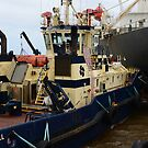 SVITZER TUGS, NEWCASTLE HARBOUR. by Phil Woodman