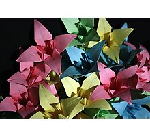 Origami Flowers #1-2 Photographic Print