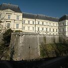 Chateaux of Louis XII, Blois, France, Europe 2012 by muz2142