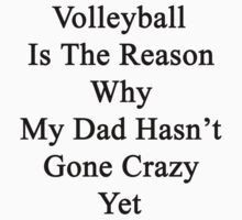 Volleyball Is The Reason Why My Dad Hasn't Gone Crazy Yet by supernova23