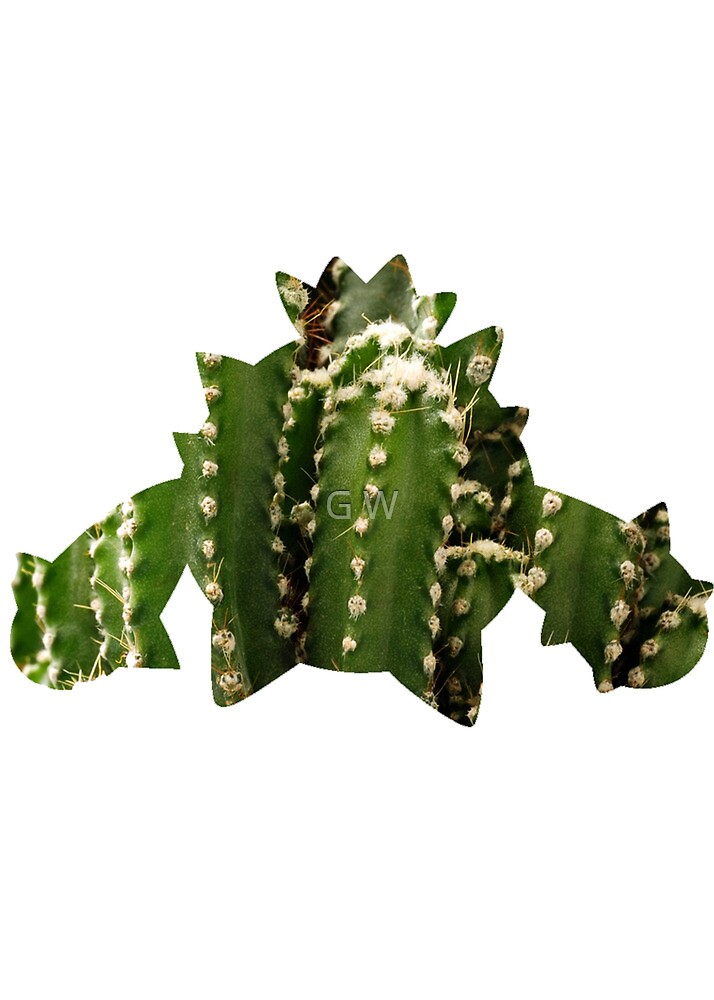Cacnea used Needle Arm by Gage White