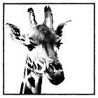 Gentle Giraffe by Wendi Donaldson