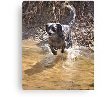 WATER!!! YAY!! Canvas Print