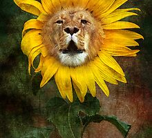 "A ""Dandy"" Lion by John Conway"