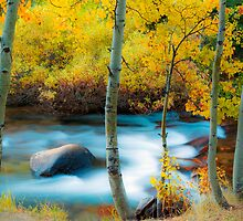Inyo Flow by Matthew Hill