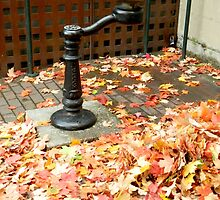 Water Fountain by kchase