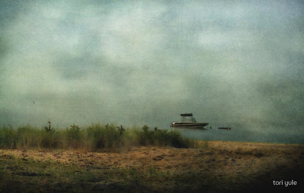 Foggy Morning by tori yule