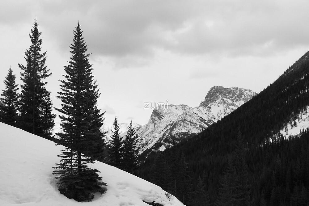 Tall pines (b&w) by zumi