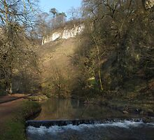 Beresford Dale Gorge 2 by Paul  Green