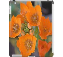 delightful orange flower iPad Case/Skin