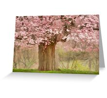 Spring Making Greeting Card