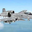 A-10 Thunderbolt  by Walter Colvin