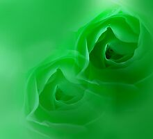 green dream by lensbaby