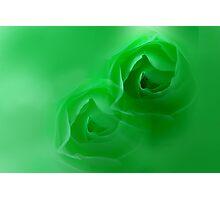 green dream Photographic Print