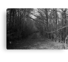 Path with Trees Canvas Print