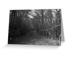 Path with Trees Greeting Card