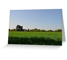 Green Field Greeting Card