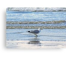 A Paddle In The Surf Canvas Print