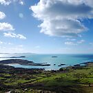 West of Ireland - Ring of Kerry by Tomasz-Olejnik