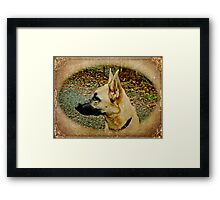 Beauty and Brains Framed Print