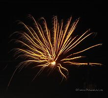 Fireworks 5 by Lindy Long
