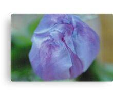 Blue/Purple Flower Canvas Print