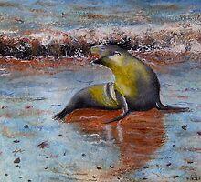 Seal on Galapagos  by Lynne Reeves