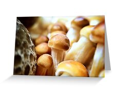Shrooms Greeting Card