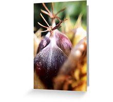 Sweet chestnut Greeting Card
