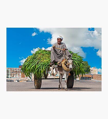 Farmer. Photographic Print