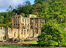 Rievaulx Abbey - HDR by Colin  Williams Photography