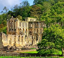 Rievaulx Abbey - HDR by Colin J Williams Photography