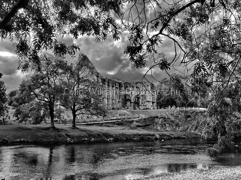 Bolton Abbey by Colin  Williams Photography