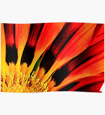 Flower on Fire Poster