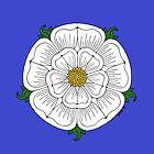 White Rose of York by Richard Fay